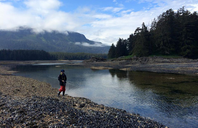 The Tongass National Forest protected by Roadless Rule