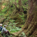 Enjoying the Tongass National Forest